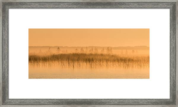 Framed Print featuring the photograph Misty Morning Floating Bog Island On Boy Lake by Patti Deters
