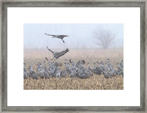 Misty Morning Nebraska Landing Framed Print