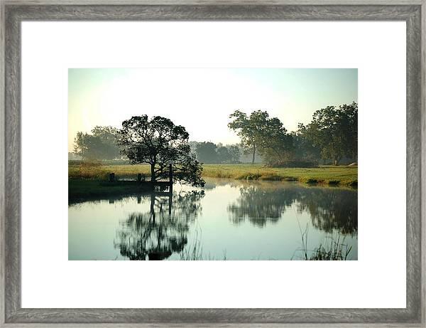 Misty Morning Pond Framed Print