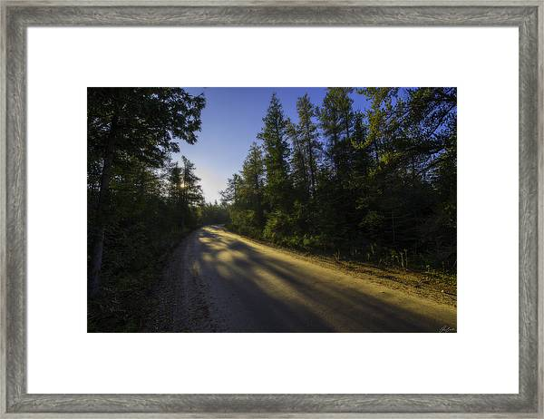 Misty Morning Walk Through The Woods Framed Print