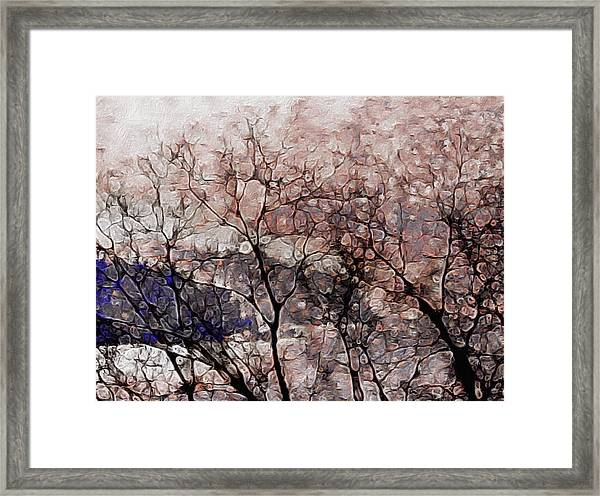 Misty Sunrise On Whidbey Island Framed Print
