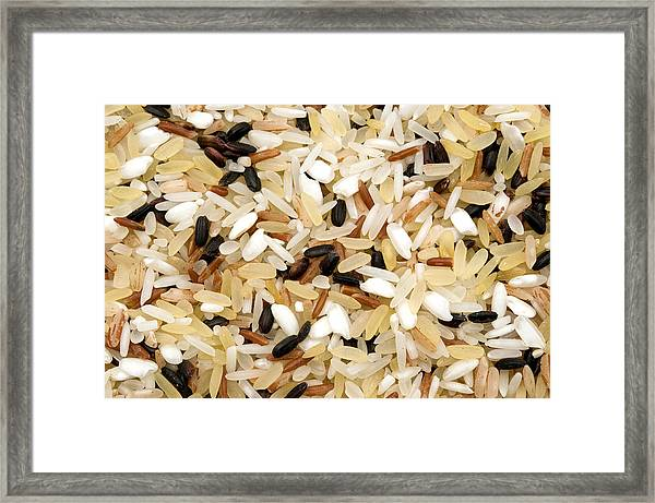 Mixed Rice Framed Print