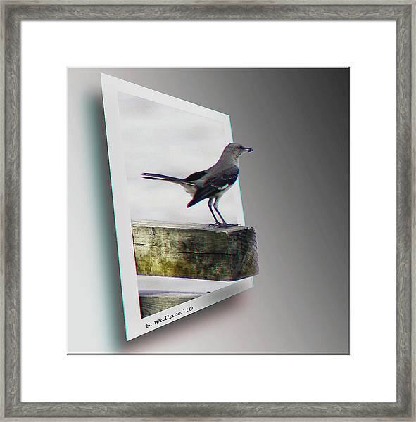 Mockingbird - Use Red-cyan 3d Glasses Framed Print
