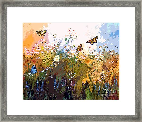 Modern Chamomille And Butterflies Framed Print