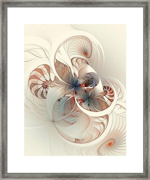 Mollusca Framed Print