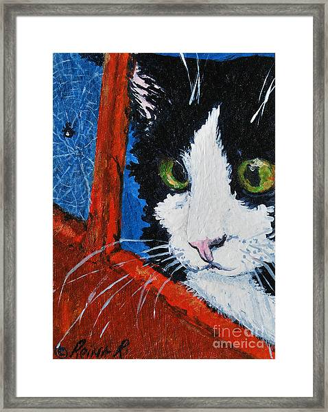 Molly Framed Print