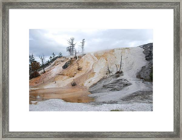 Mommuth.yellowstone National Park Framed Print