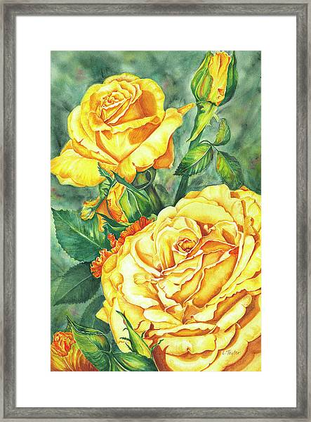 Mom's Golden Glory Framed Print