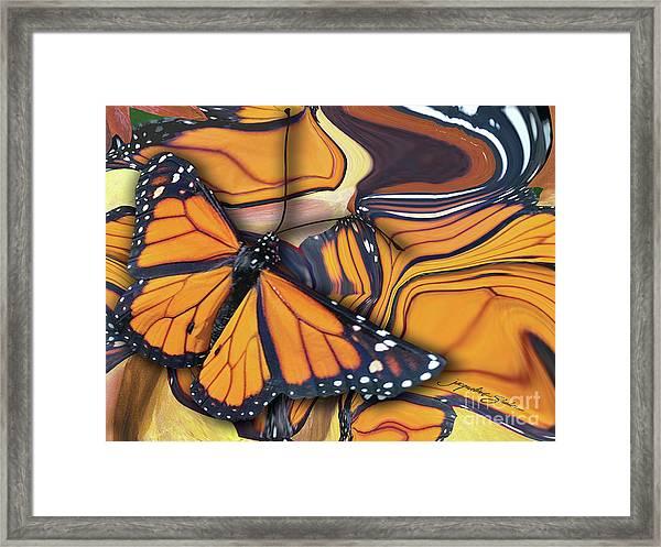 Monarch Flight Framed Print