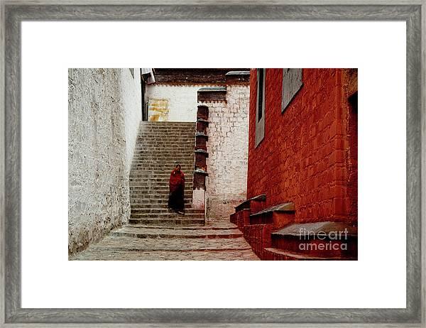 Monk In Tashilhunpo Monastery Shigatse Tibet Artmif.lv Framed Print