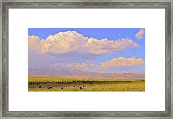 Mono Lake Rangelands Framed Print by Gus McCrea