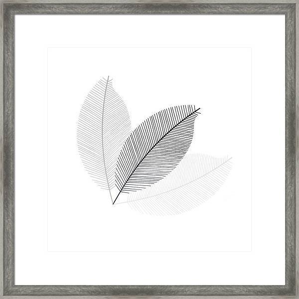 Monochrome Leaves Framed Print