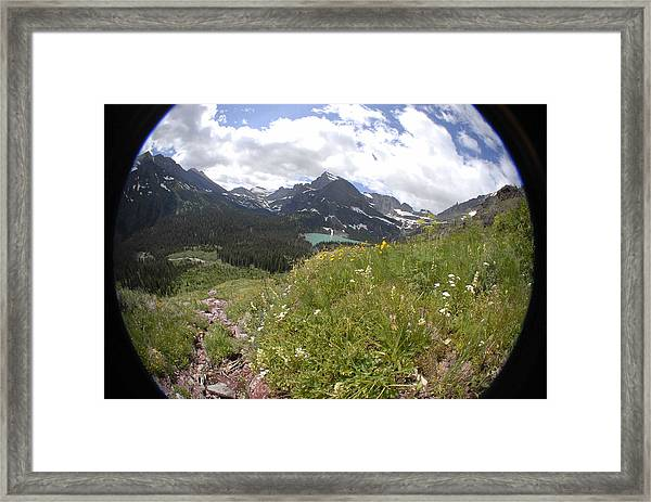 Montana Rolling Wildflowers Framed Print