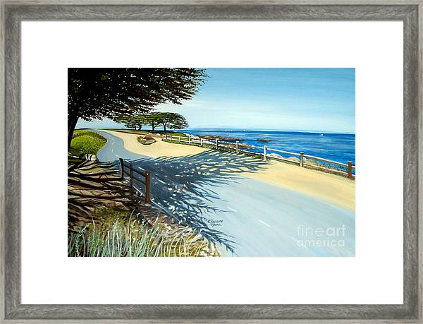 Monterey Shadows Framed Print