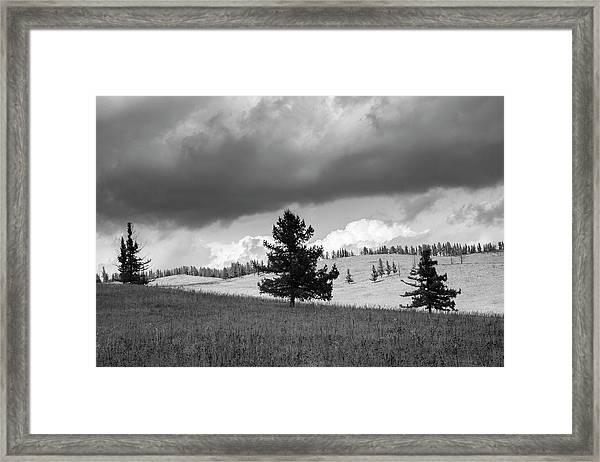 Moody Meadow, Tsenkher, 2016 Framed Print
