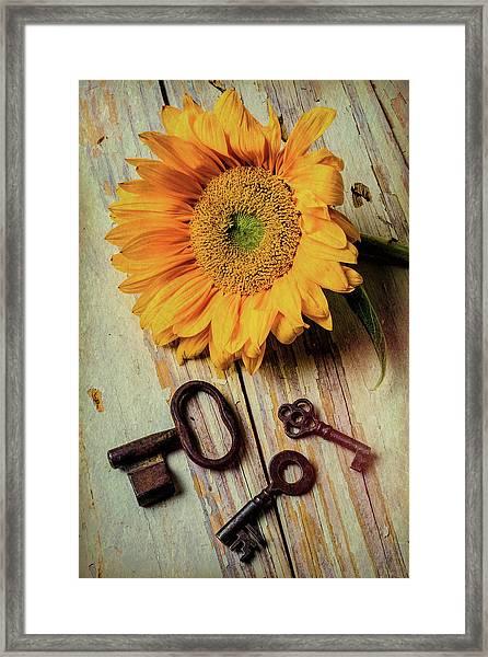 Moody Sunflower With Keys Framed Print