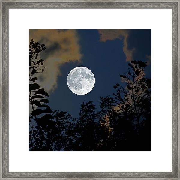 Moon Glo Framed Print