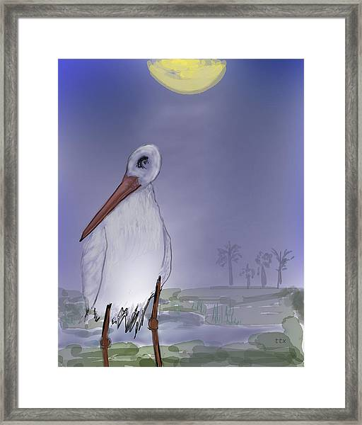 Moon Rise Becomes A Stork Framed Print