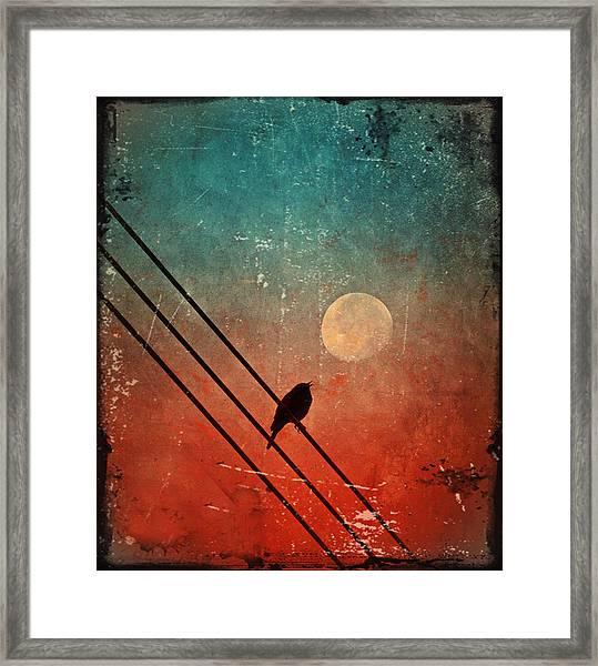 Moon Talk Framed Print