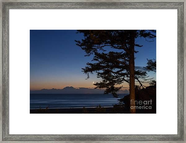 Moonlight At The Beach Framed Print