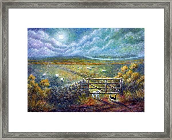 Moonlight Rendezvous Framed Print