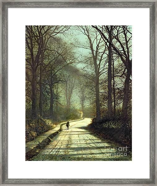 Moonlight Walk Framed Print