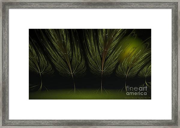Moonlit Forest Framed Print by Sandra Bauser Digital Art