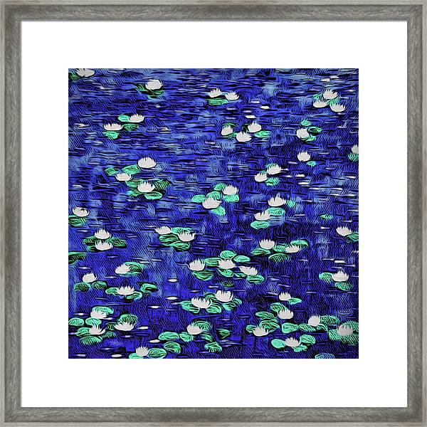 Moonlit Nymphaea Framed Print