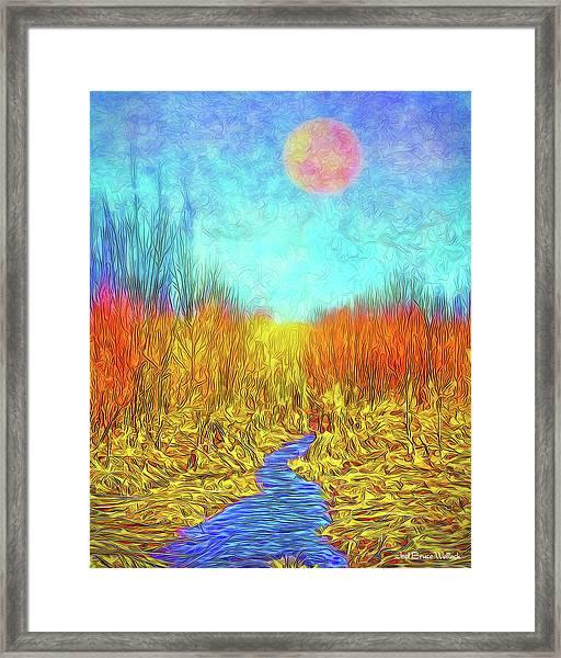 Moonlit Wilderness - Colorado Stream In Boulder County Framed Print