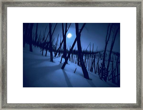 Moonshadows Framed Print