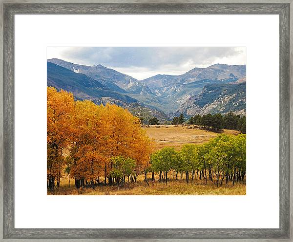 Moraine Park In Rocky Mountain National Park Framed Print