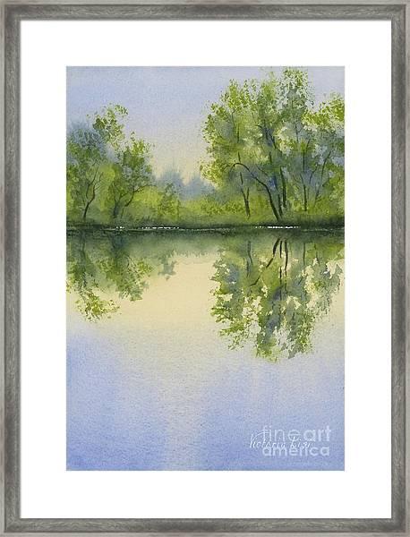 Morning At Turtle Pond Framed Print