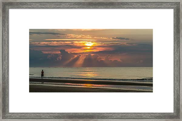 Morning Break Framed Print
