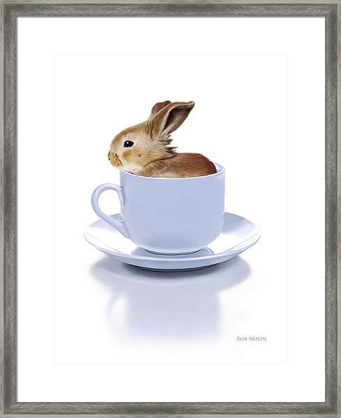 Morning Bunny Framed Print