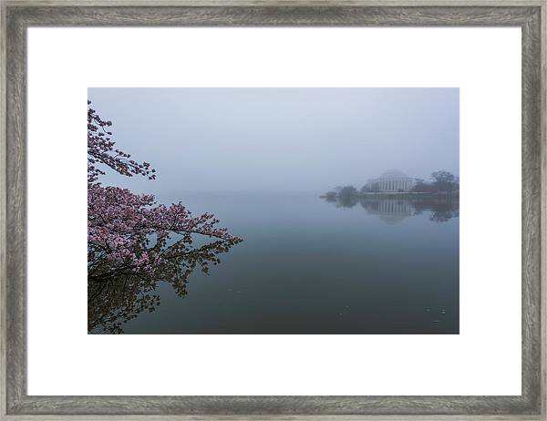 Morning Fog At The Tidal Basin Framed Print by Michael Donahue