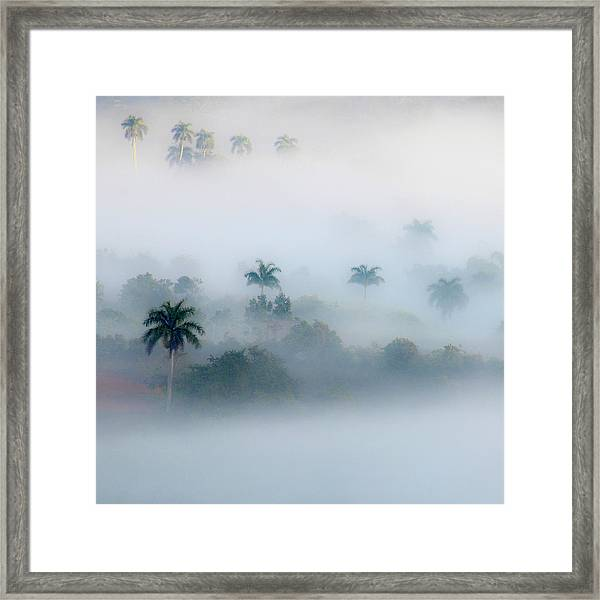 Morning Fog, Vinales Valley Framed Print