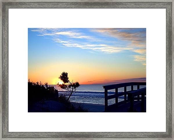 Morning I I Framed Print