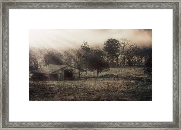 Morning In Boxley Valley Framed Print