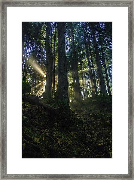 Morning Light Rays Framed Print