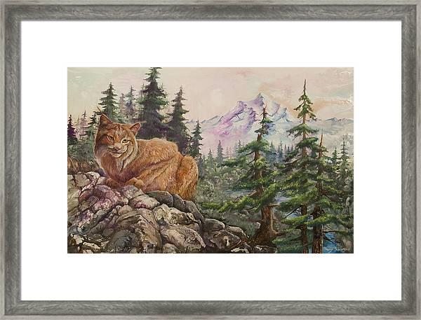 Morning Lynx Framed Print