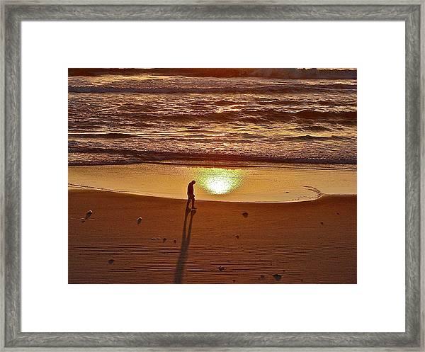 Morning Meditation Framed Print