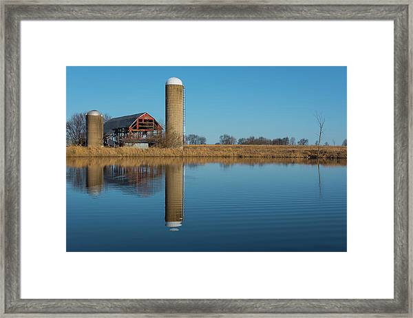Morning On The Farm Framed Print