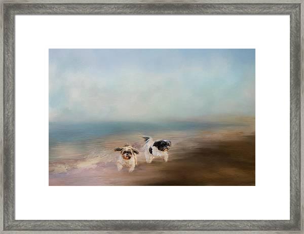 Morning Run At The Beach Framed Print