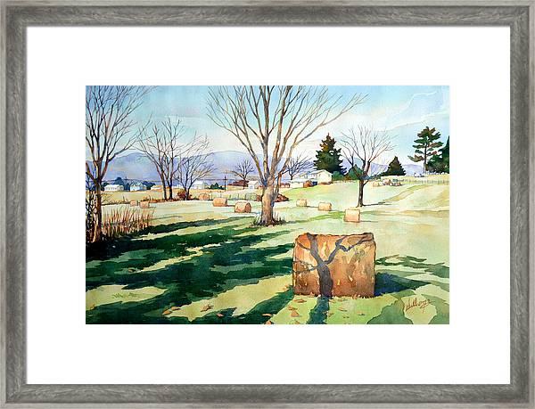 Morning Sun On Haybales Framed Print