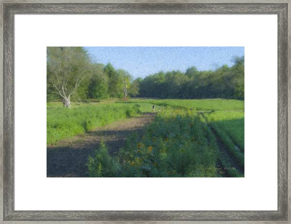 Morning Walk At Langwater Farm Framed Print