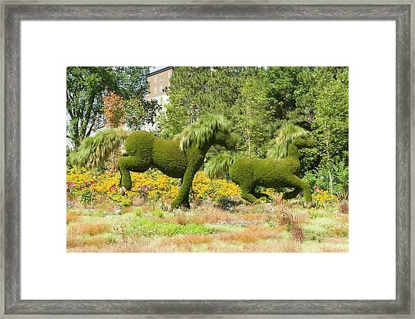 Mosaicanada 150 Display Of Horses 2 Framed Print