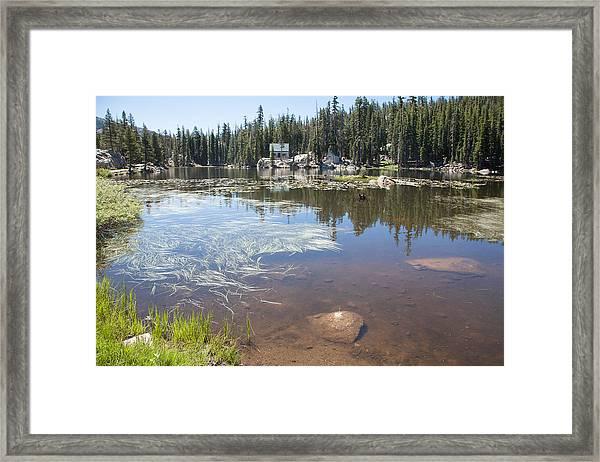 Mosquito Lake Framed Print