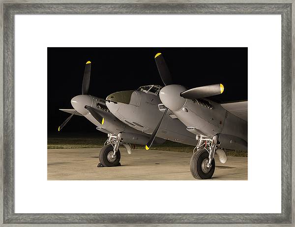 Mosquito Night Framed Print