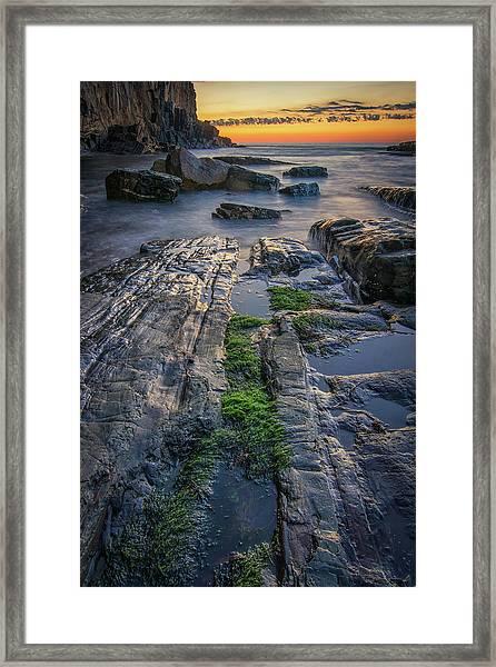 Mossy Rocks At Bald Head Cliff  Framed Print