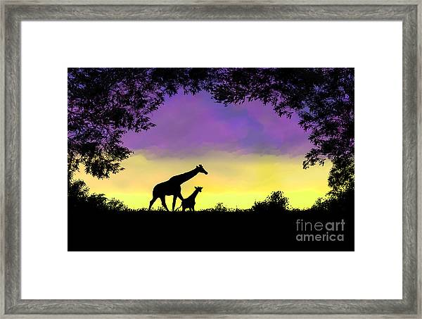 Mother And Baby Giraffe At Sunset Framed Print
